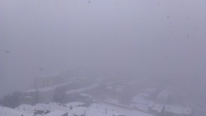 Neve Albidona